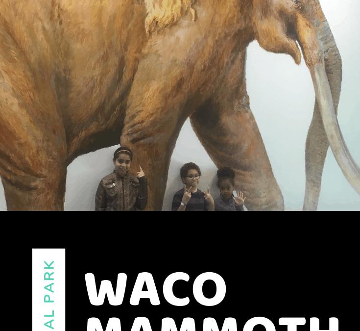 Waco Mammoth Cave History