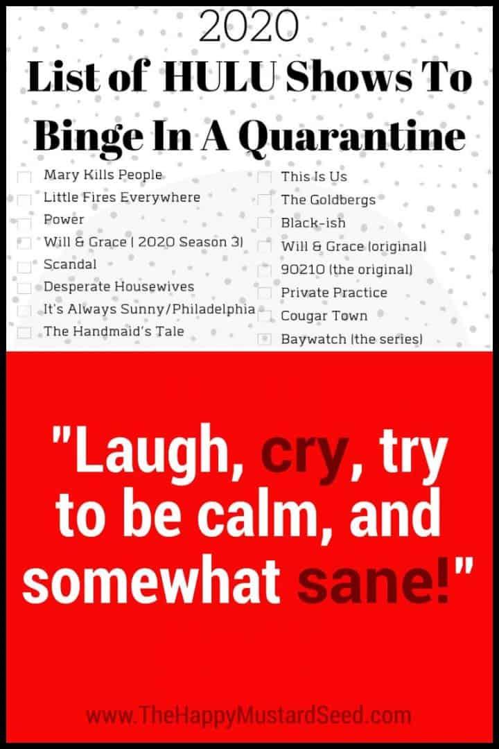 800x1200 List of Hulu Shows to binge in a quarantine