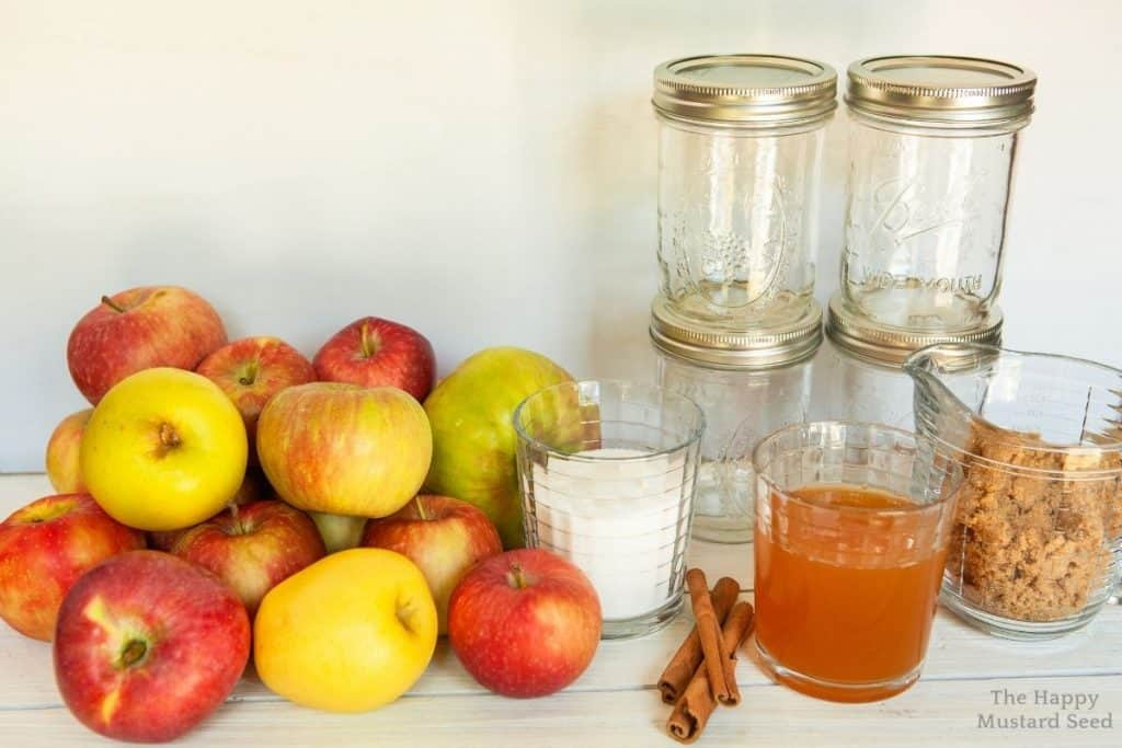 canned applesauce ingredients