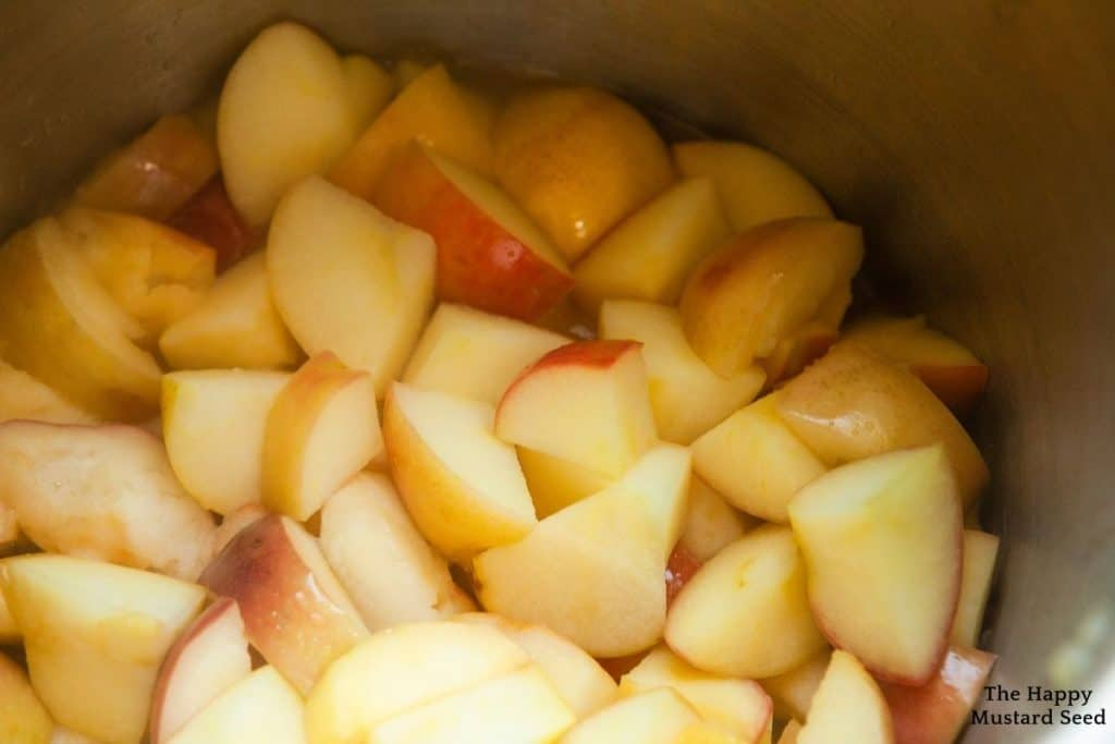 Apples in large stock pot for canning apples