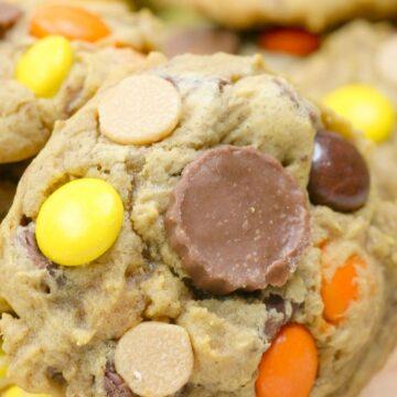 pumpkin chocolate chip cookies close up