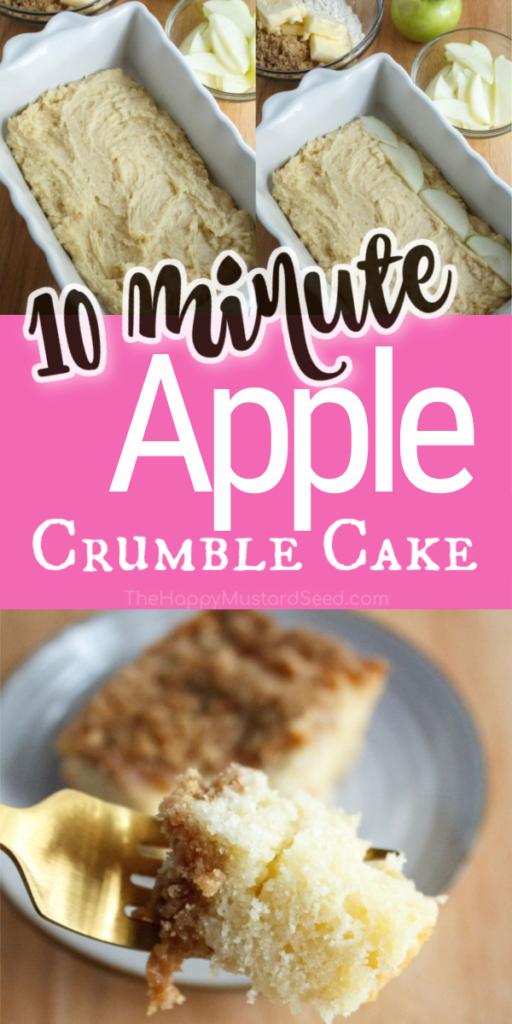 Cinnamon-Apple-Crumble-Cake-Pin