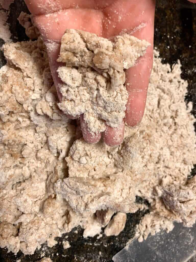 hand showing crumbly homemade sourdough whole wheat tortilla dough.